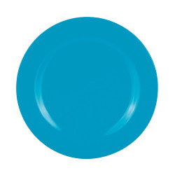 BBQ - Assiette 28 cm - Bleu aqua